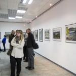 Художественная выставка «Затерянный мир Паанаярви»