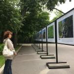 Таганский парк Выставка Заповедная Россия -Паанаярви