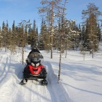 На зимнем маршруте